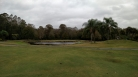 Walt Disney World Golf Courses Palm - Oak Trail - Magnolia