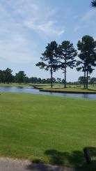 Man O'War Golf Links
